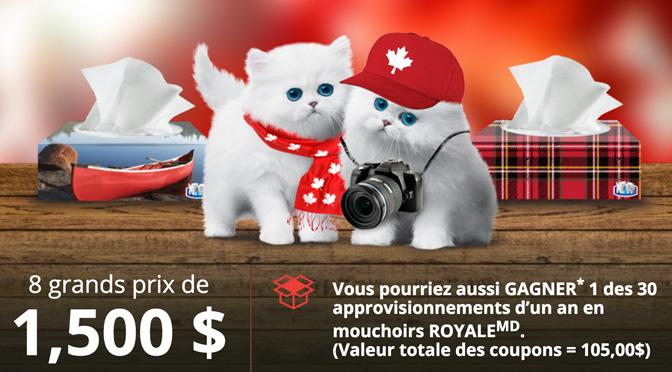 concours Royal Mouchoir