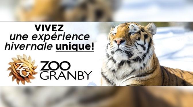 Gagnez un forfait famille pour le Zoo de Granby en hiver d'une valeur de 100 $